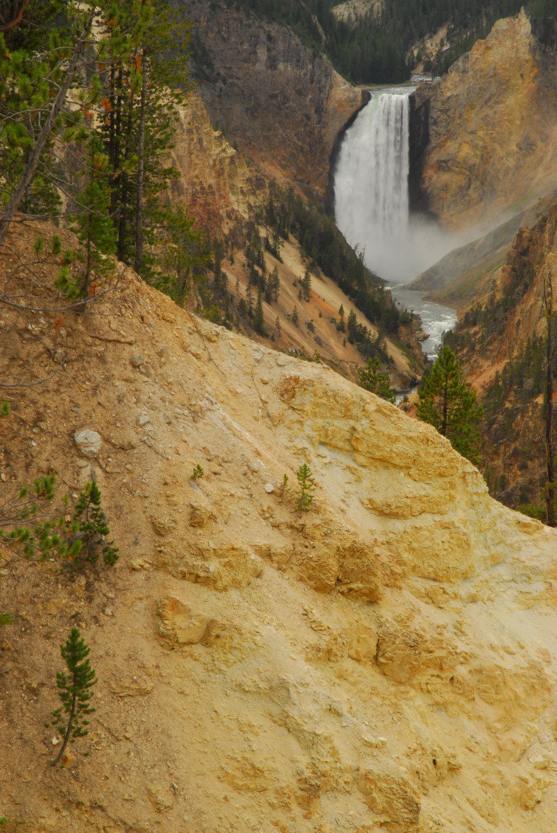 Lower Falls, Grand Canyon of the Yellowstone  -  Yellowstone National Park, Wyoming