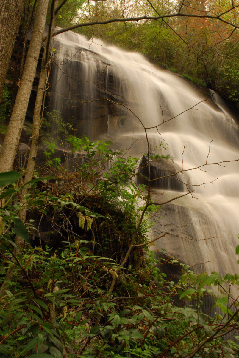 Daniel Ridge Falls  -  Pisgah National Forest, North Carolina