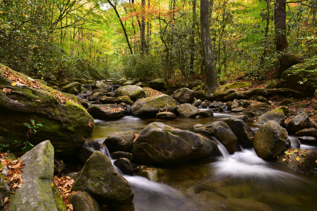 Cascades and fall colors  -  Middle Saluda River  -  Middle Saluda Passage of the Palmetto Trail  -  Jones Gap State Park, South Carolina