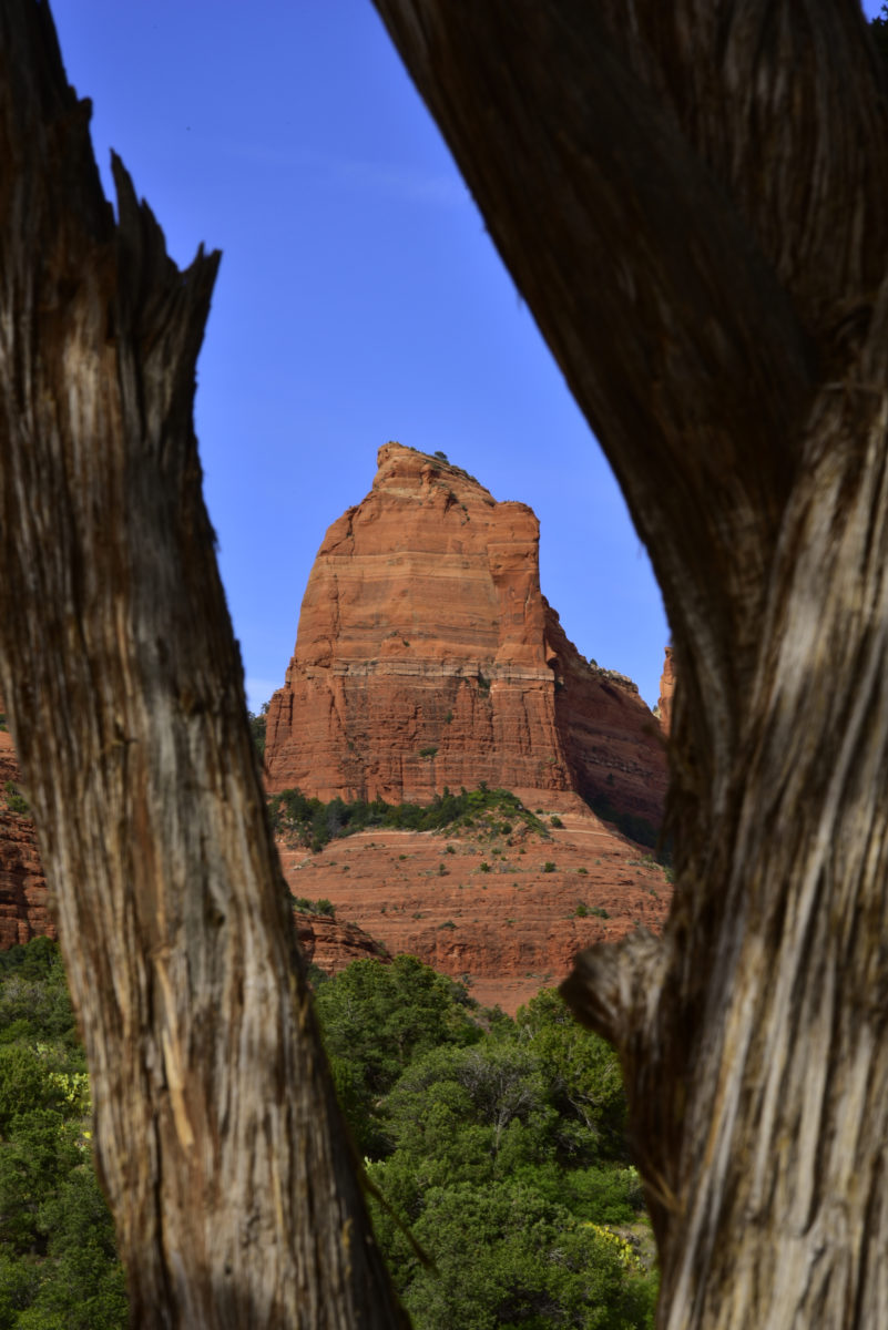View from Schnebly Hill Road  -  Red Rock Country  -  Coconino National Forest, Arizona