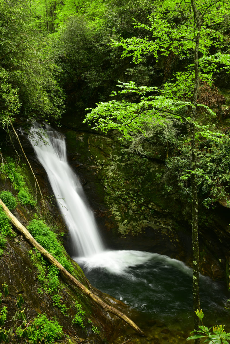 Courthouse Falls  -  Pisgah National Forest, North Carolina