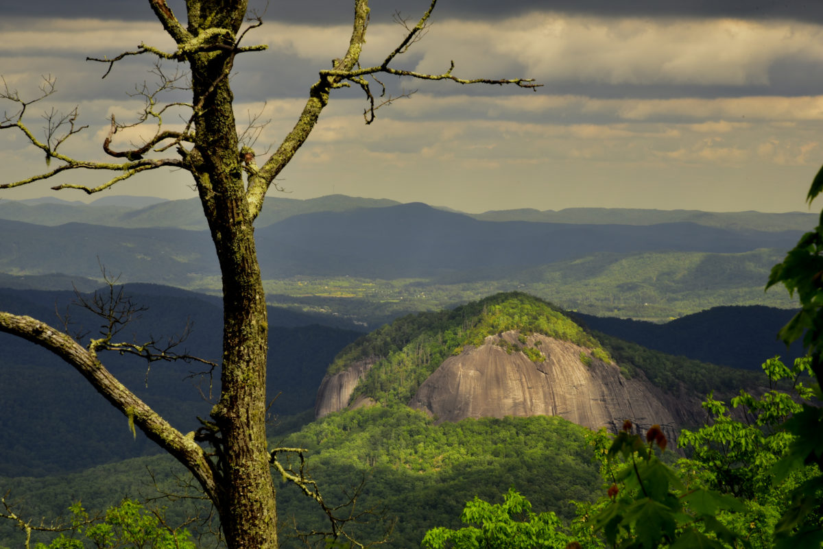 Looking Glass Rock  -  Approx MM 417.6  -  Blue Ridge Parkway, North Carolina