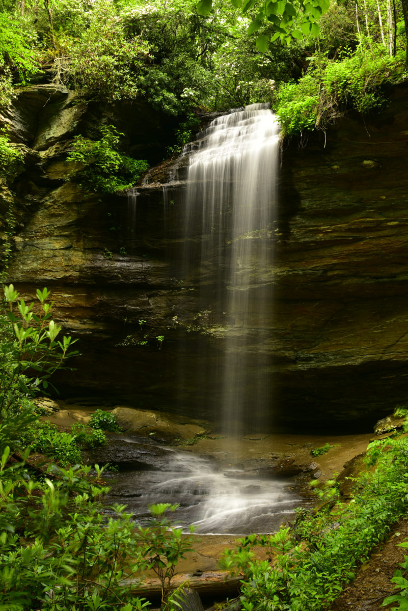 Moore Cove Falls  -  Pisgah National Forest, North Carolina