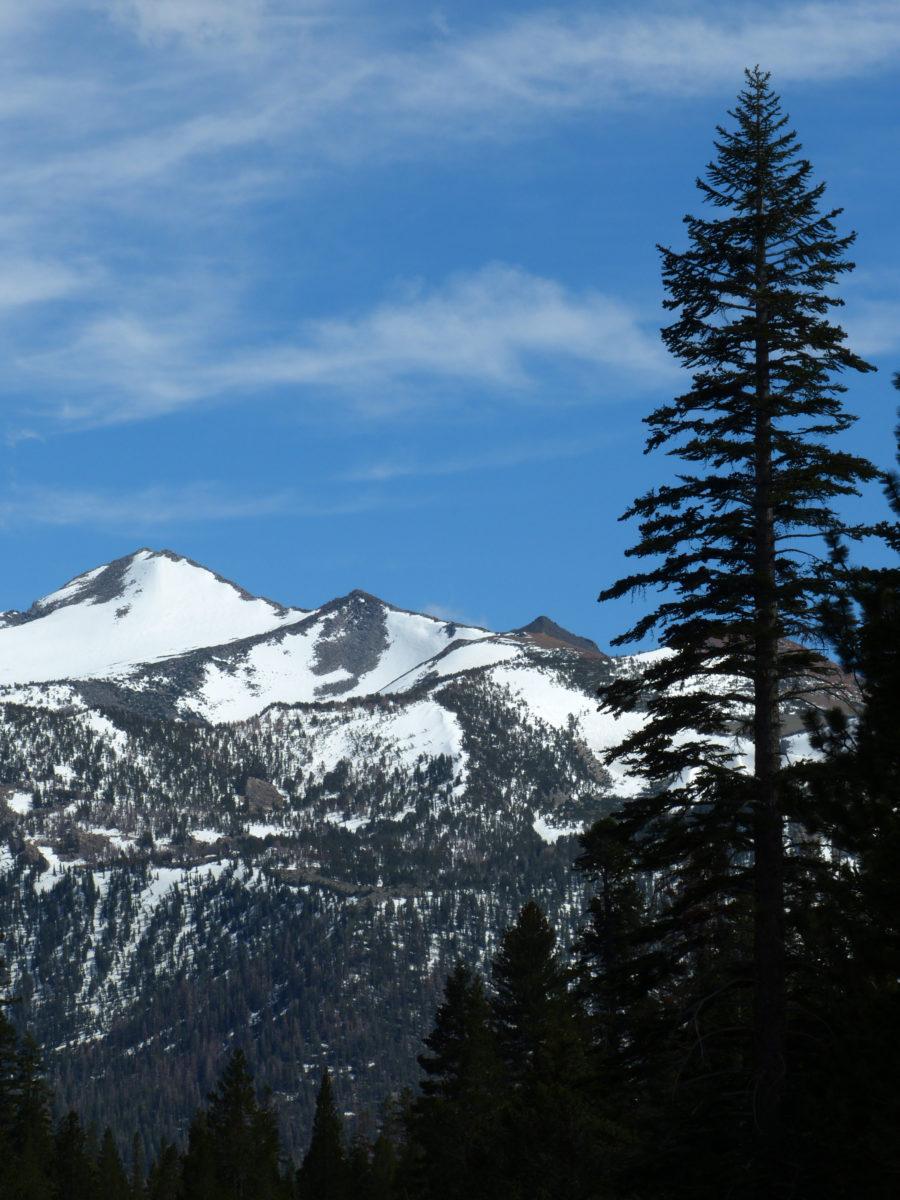 Snow-covered peaks, Eastern Sierra Nevada  -  Scenic Loop Road  -  Mammoth Lakes Area, California