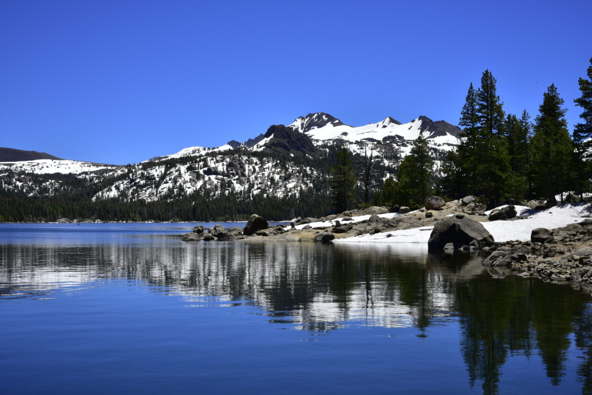 Reflection in Caples Lake  -  Eldorado National Forest, California