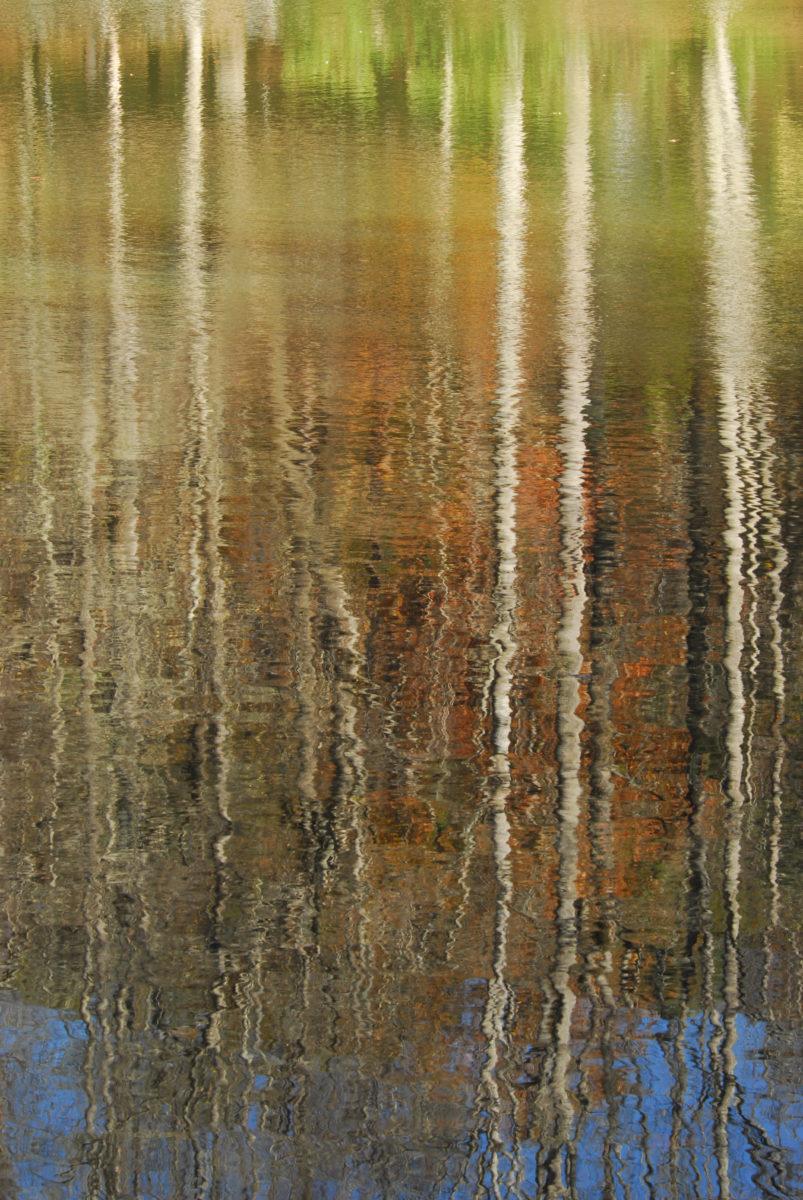 Reflection in Pinnacle Lake  -  Greenville County, South Carolina