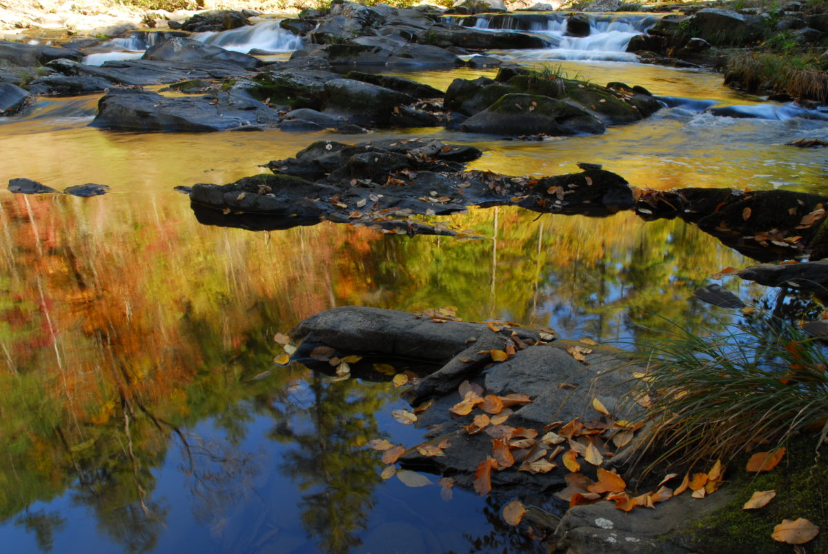 Reflection in the Tellico River  -  Cherokee National Forest, North Carolina